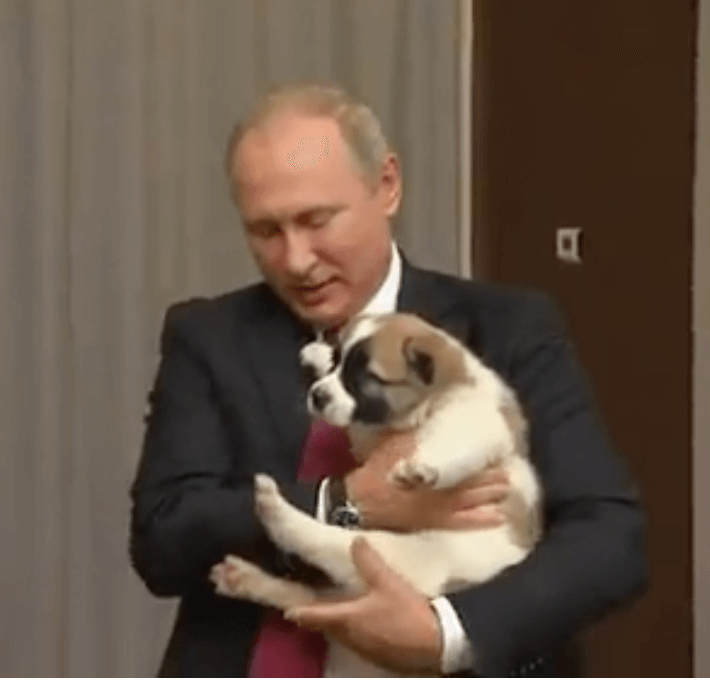 Putin in Birthdayland and Alice in Wonderland