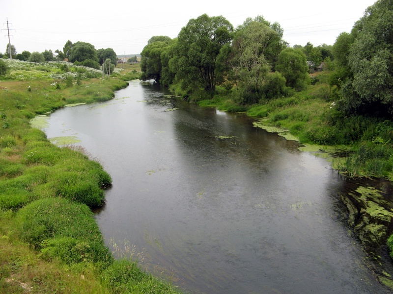 A Great Overlooked Victory