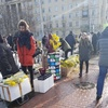 Not Such a Flowering Holiday